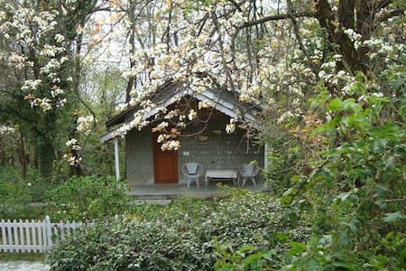 Rose Cottage at Tea Gardens in Palampur - Palampur