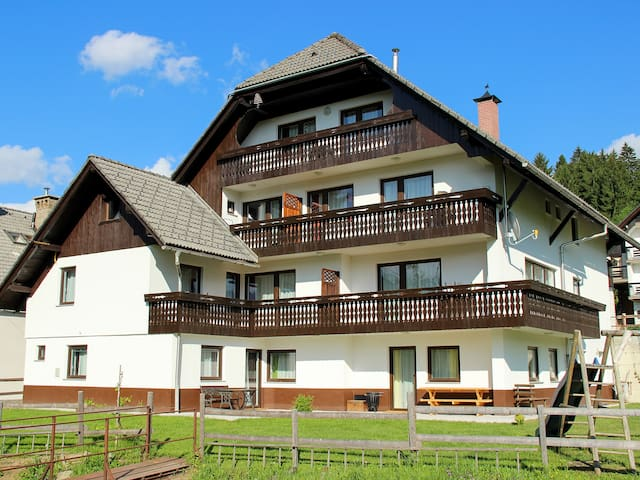 Large apartment on the outskirts of Bohinj valley