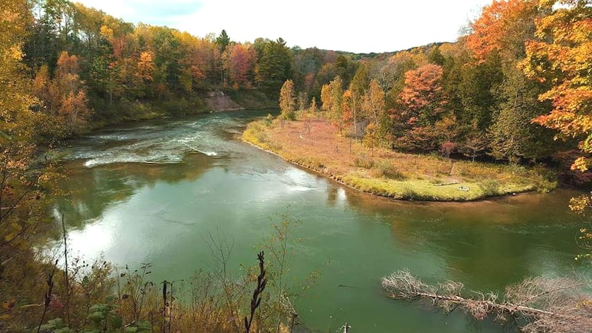 View from a hike along the Manistee River Trail. Trailhead starts just at the end of the street.