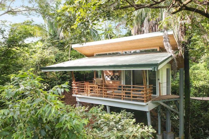 Treehouse #1