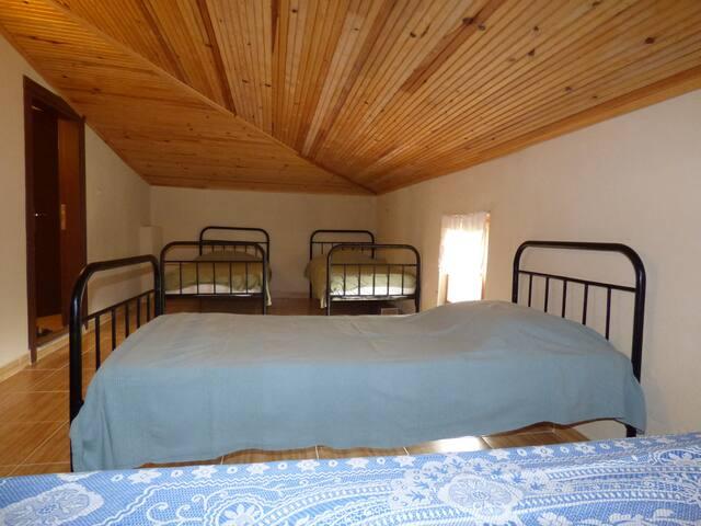 HarmonyPine Hostel'de | Çatı Odası