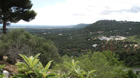 Horizon of Puglia
