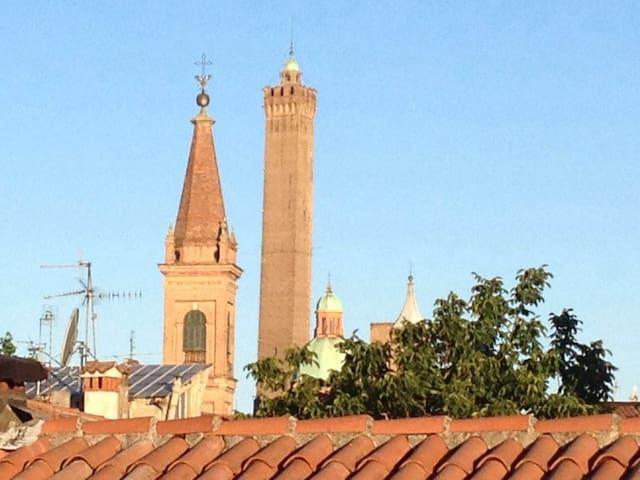 BOLOGNA :Lovely place in center, italian breakfast - Bologna - Apartment