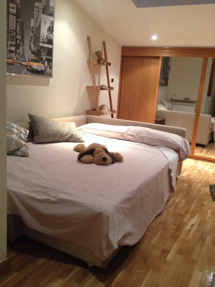 Espaciosa habitación privada en pleno centro