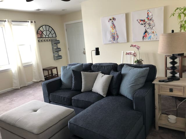 Chicago NW Suburbs - Whole House, Modern, Clean