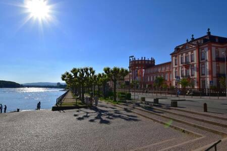 Appartment mit Schlosspark und Rhein vor der Tür!