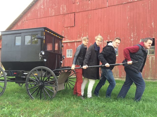 Marsha's Vineyard/Heart of Amish Country