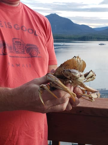 The fisherman hollers up to us when then they have a fresh catch and we run down and buy these beauties. $10 a crab is about the going rate.