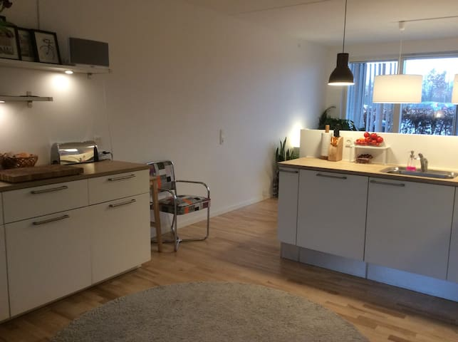 Apartment, 2 bedrooms, 2 terraces - Roskilde - Apartment