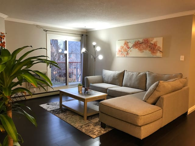 cozy and spacious condo