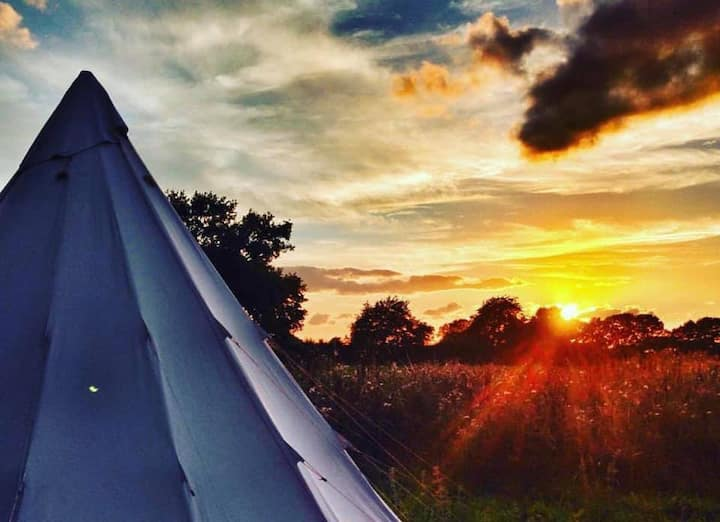 Wild Harvest Family Camping Exclusive Use of Site