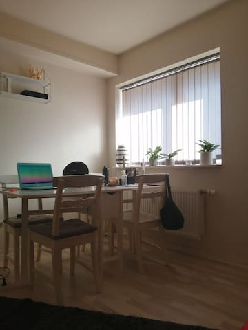 Lovely apartment located in Viborg City!!