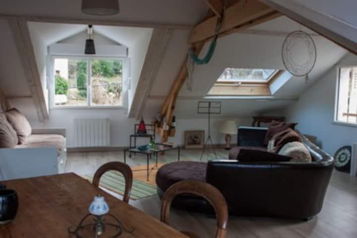 Appartement  loft , traversant, ensoleillé , calme