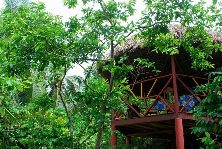 Coconut Corner (Casa Marielis & Felipe)