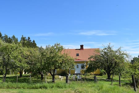House surrounded by peaceful fruit garden - Persmåla