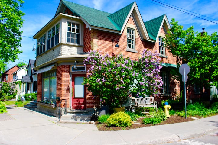 Heritage Gem+Breakfast+Coffee, Steps from SussexDr