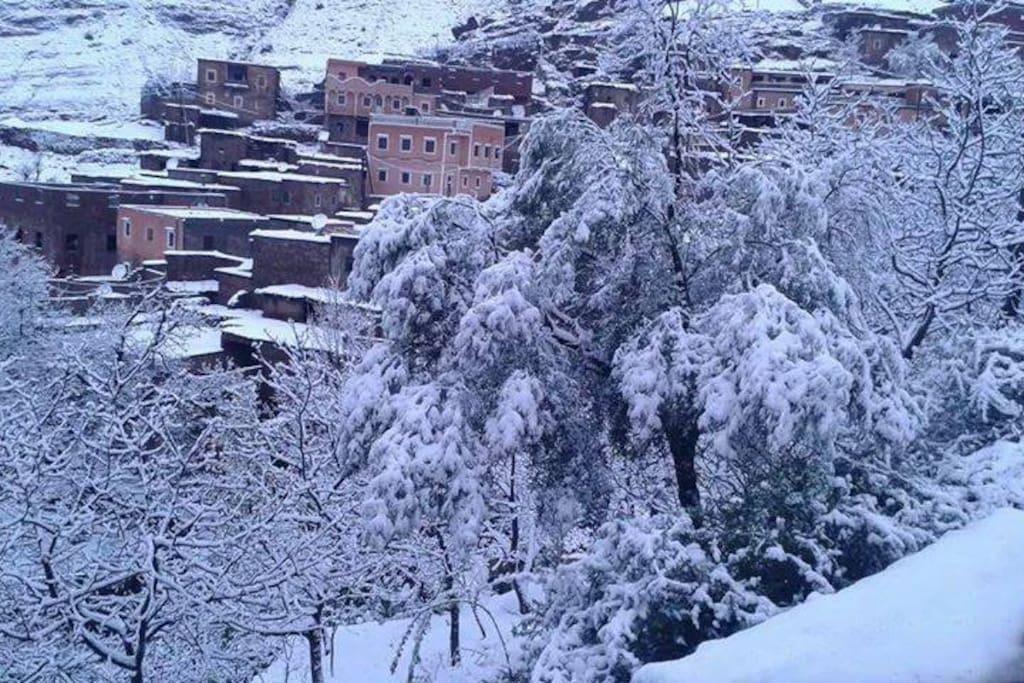 Plein nature saison d'hivers