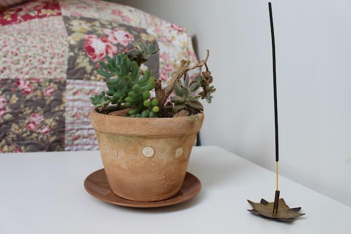 Plantinha e incenso pra você entrar em clima de aconchego e relaxamento!