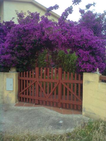"""""""Casa bouganville"""" con giardino privato - San Teodoro - Casa"""