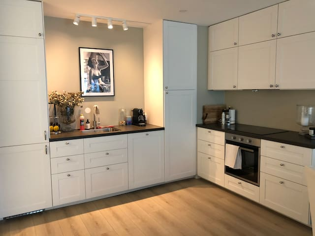 Beautiful and light apartment at Frogner