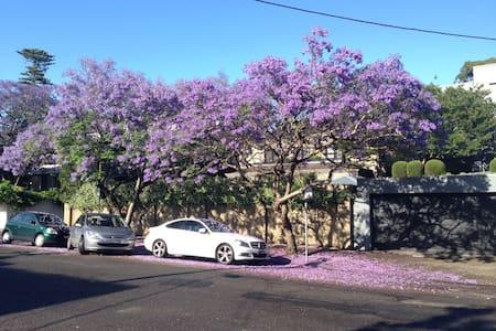 Charming Warm Woollahra Apartment - Woollahra