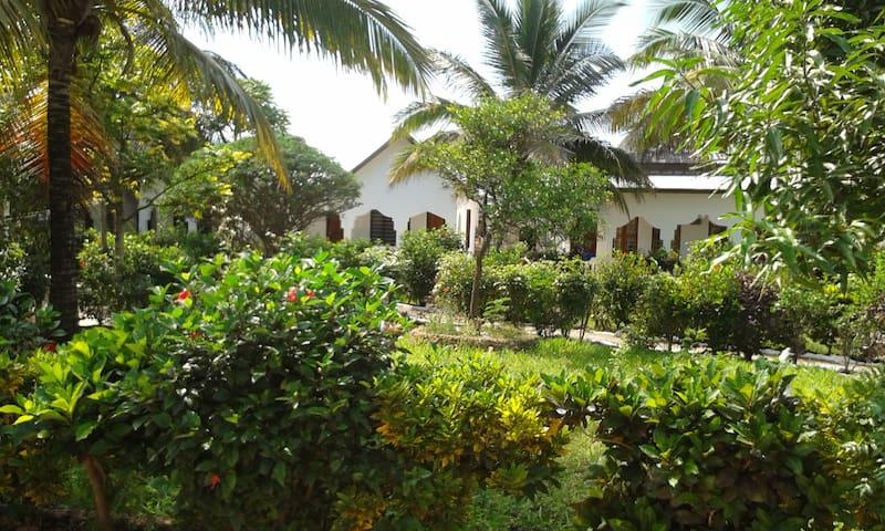 KIHORI beach bungalows