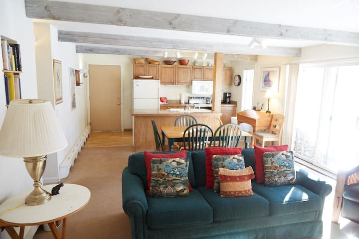 Charming and Cozy in Snowmass Villa - Aspen - Apartment