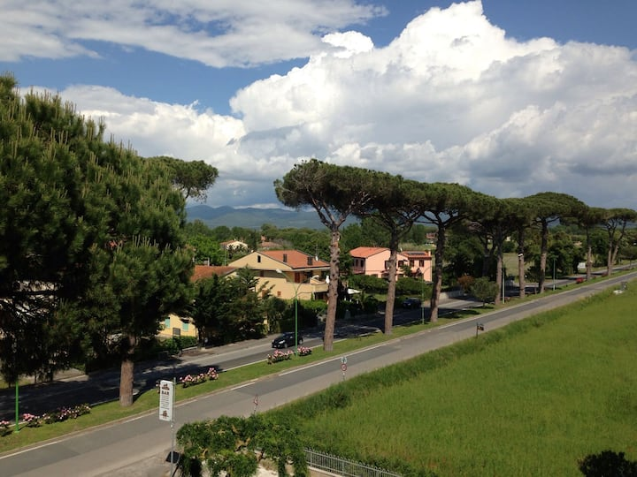 Mare, pineta e  grandi vini di Bolgheri