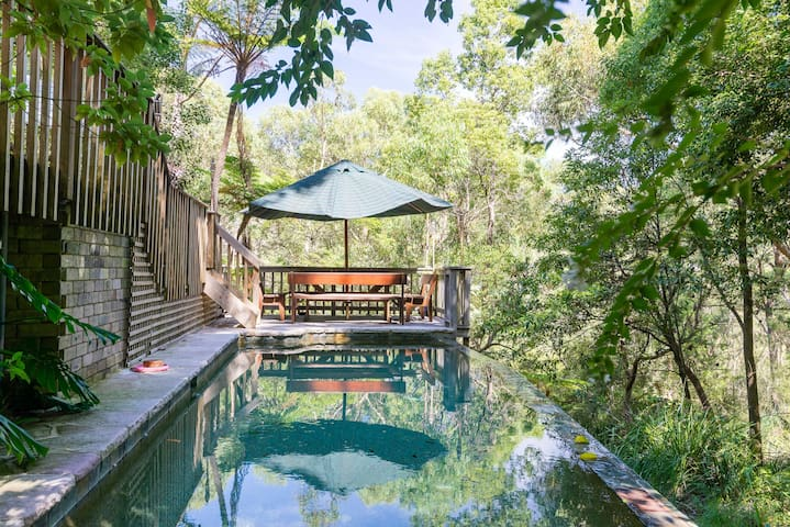 Wonderful private bush setting - Frenchs Forest - House