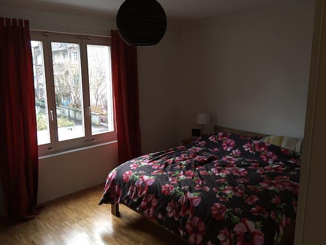 Schönes Zimmer in Bern/Länggasse - Bern - Apartamento