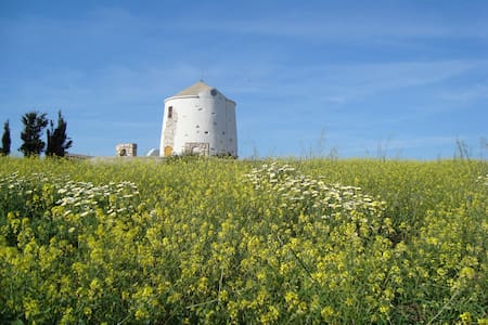 Paros Traditional Windmill - Paros