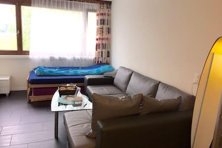 Fair price and nice apartment. - Baar - Apartament
