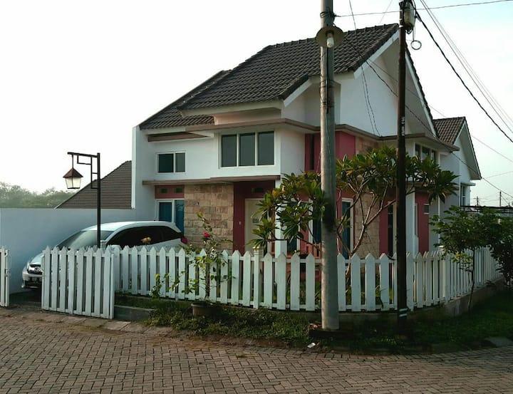Homestay murah, cantik +wifi di kota Malang  Batu