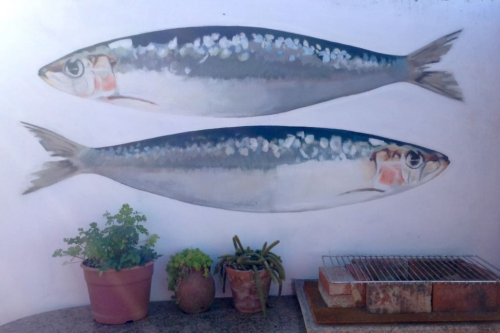Sardine mural on wall in back garden