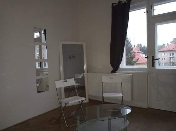 Spacious bright room with balkony near city center