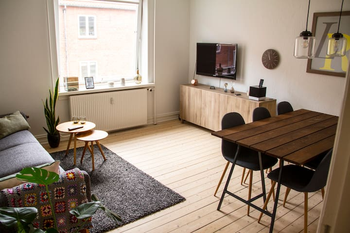 Charming apartment close to øgadekvarteret - Aalborg - Lägenhet