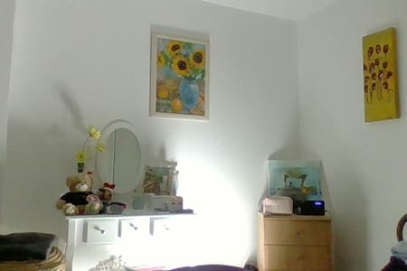 Cosy room in a sweet flat in the heart of Dawlish.
