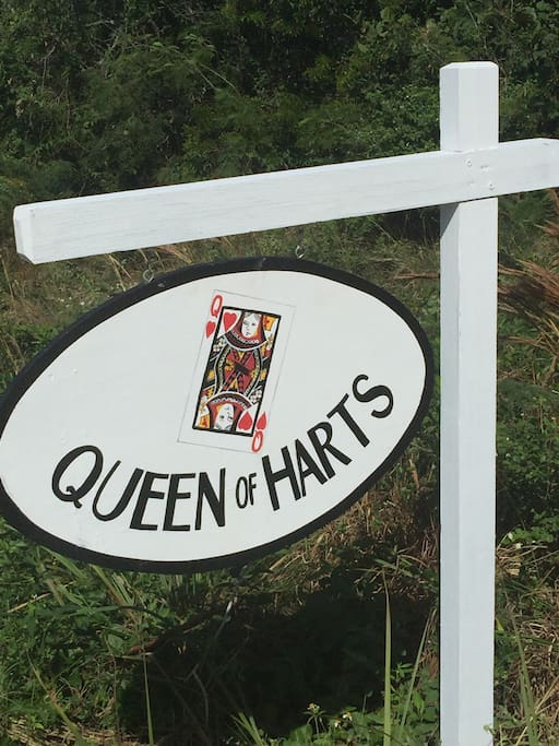 Welcome to the Queen Of Harts!