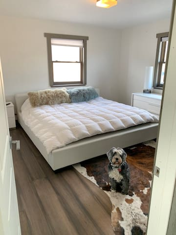 Master Bedroom  (dog not included)