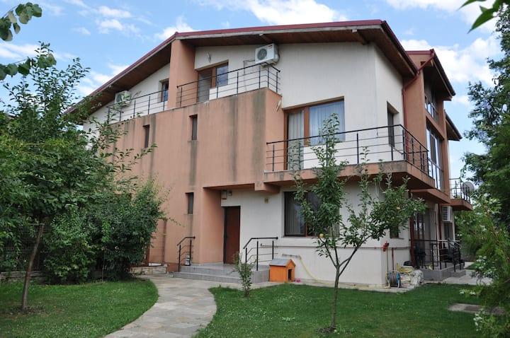 Vila Mogosoaia