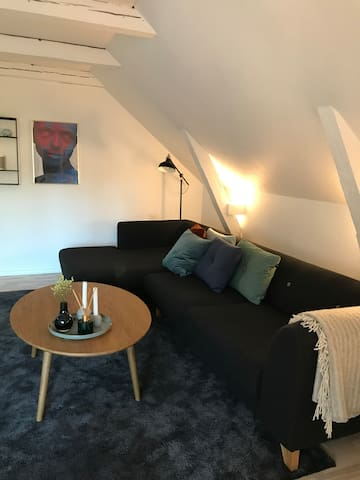 89m2 apartment in the city centre of Odense