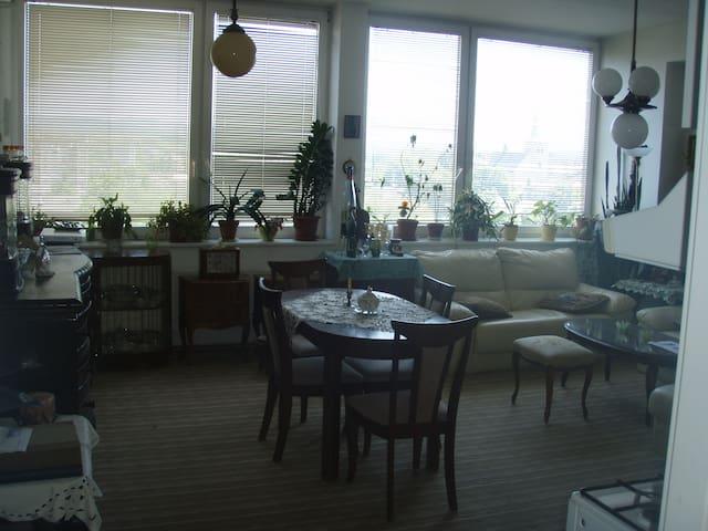 Prostorný byt s výhledem na centrum - Valašské Meziříčí - Flat