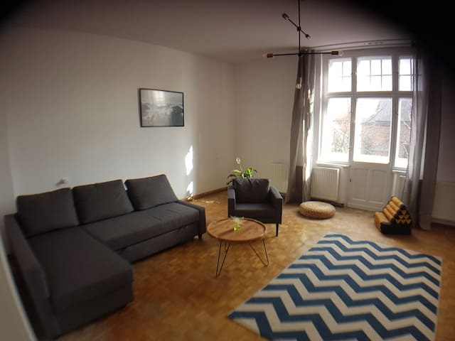 Spacious apartment in Gniezno city centre.