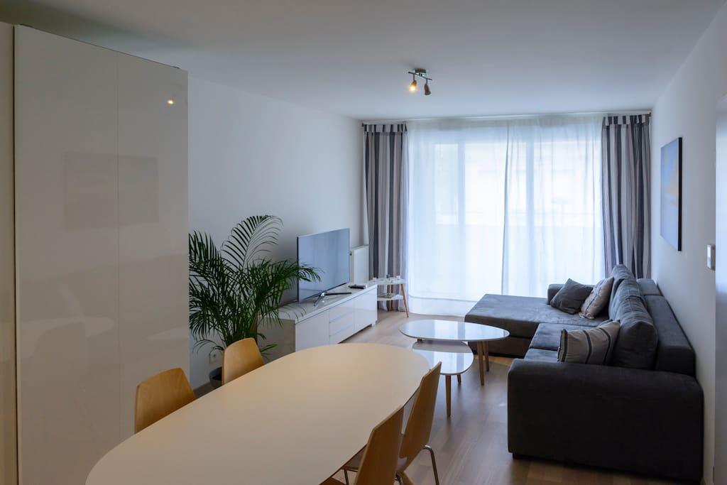 Le salon grand confort - TV samsung Full HD grand écran 48 pouces.