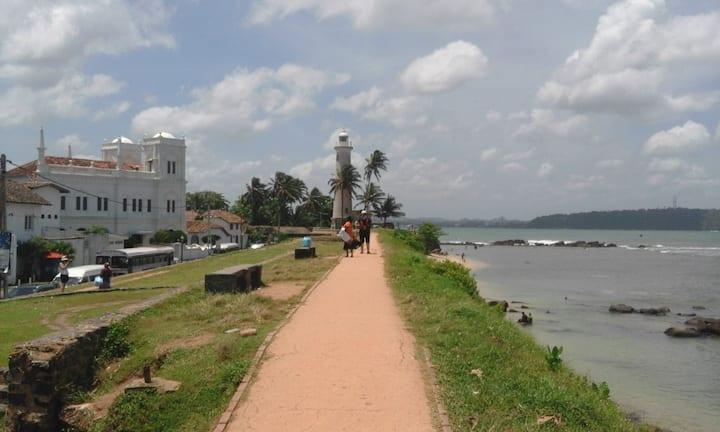 Escorted Tours in Sri Lanka