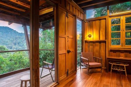 Spyder Hill - Spyder Room