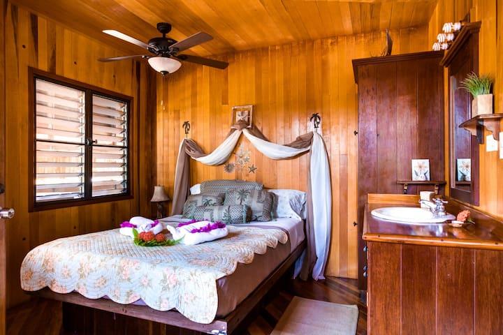 Left side downstairs bedroom