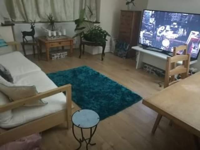 Room in Wimbledon suited for professionals