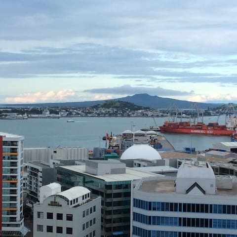 Beautiful city and sea views - Auckland - Appartement