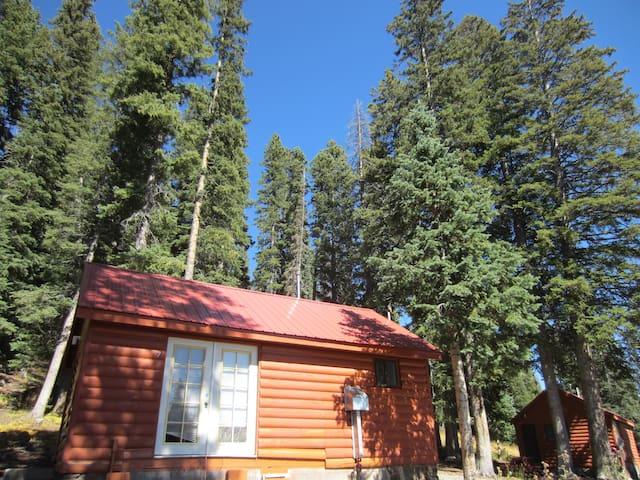 Cabin #7 at Thunder Mountain Lodge